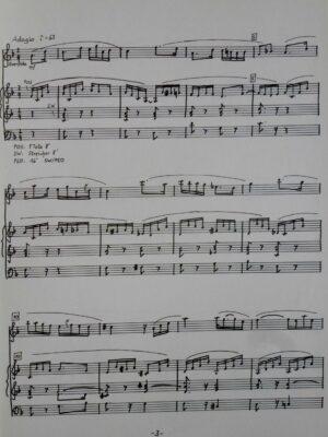Josef Rheinberger (1839-1901): Romanze F-Dur für Querflöte und Orgel bearbeitet