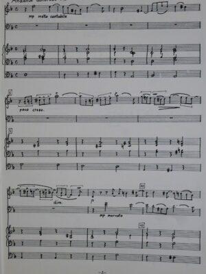Peter Tschaikowsky (1840-1893): Andante doloroso d-Moll für Violine, Violoncello und Orgel bearbeitet