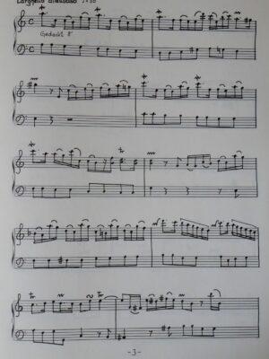 Georg Friedrich Händel: Concerto a-Moll für Orgel bearbeitet